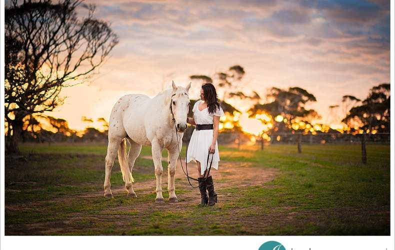 Equine portrait sneak peek | Horse Photos