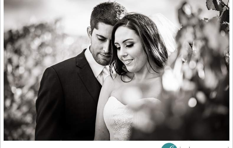 K1 winery wedding photos | Tegan + Matt's Sneak Peek
