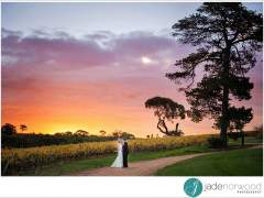 Longview Winery Wedding – Adelaide Hills