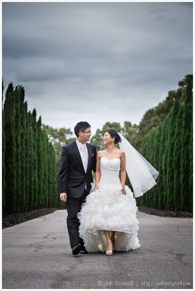 pre wedding photos chinese mclaren vale photos
