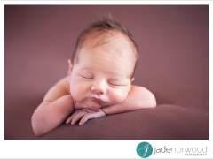 Adelaide Family Photographer | Harlee….