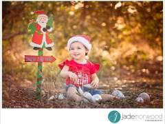 Family photos | Merry Christmas