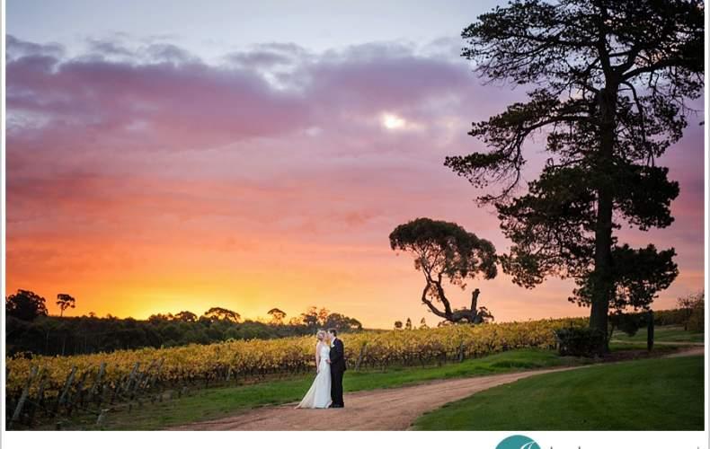 Longview Winery Wedding – Adelaide Hills
